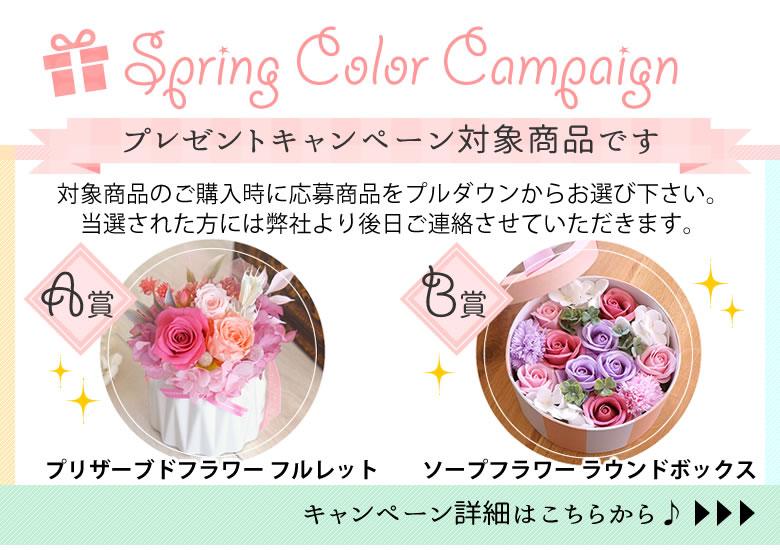 春カラーキャンペーン詳細はこちら